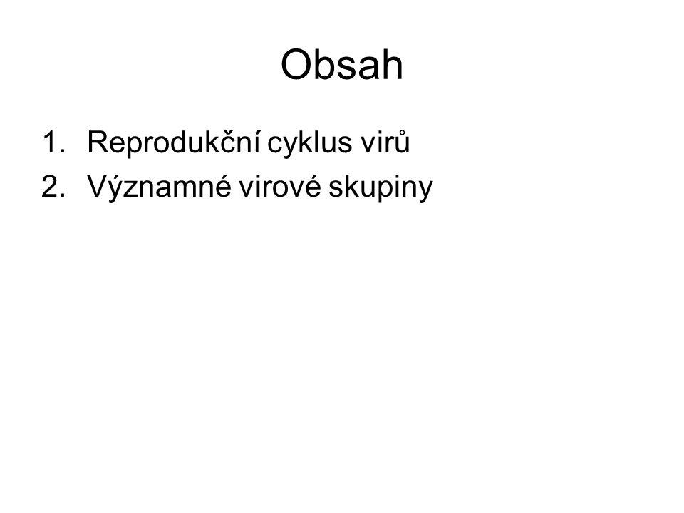 Obsah Reprodukční cyklus virů Významné virové skupiny
