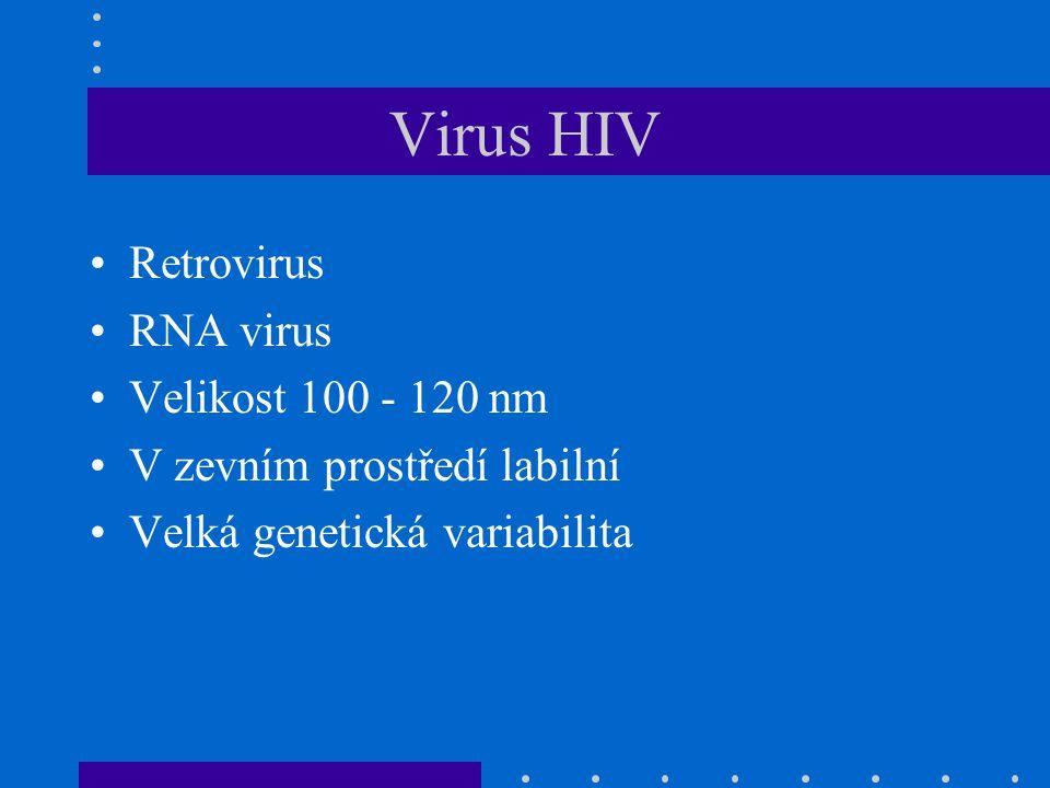 Virus HIV Retrovirus RNA virus Velikost 100 - 120 nm