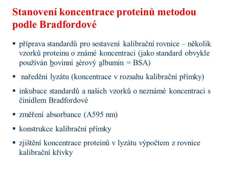 Stanovení koncentrace proteinů metodou podle Bradfordové