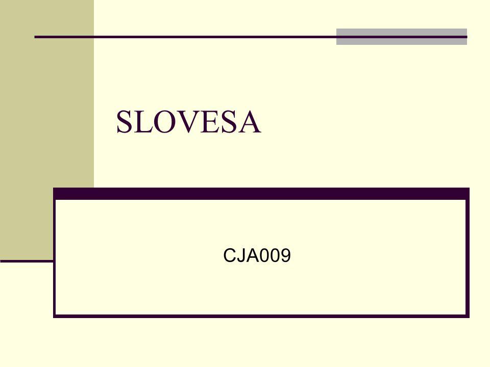 SLOVESA CJA009