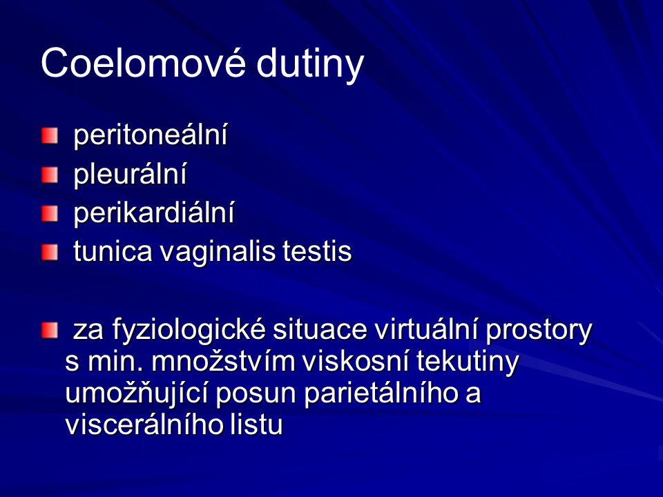 Coelomové dutiny peritoneální pleurální perikardiální