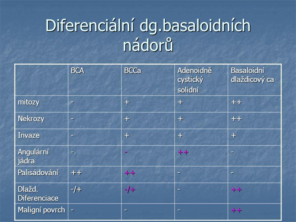 Diferenciální dg.basaloidních nádorů