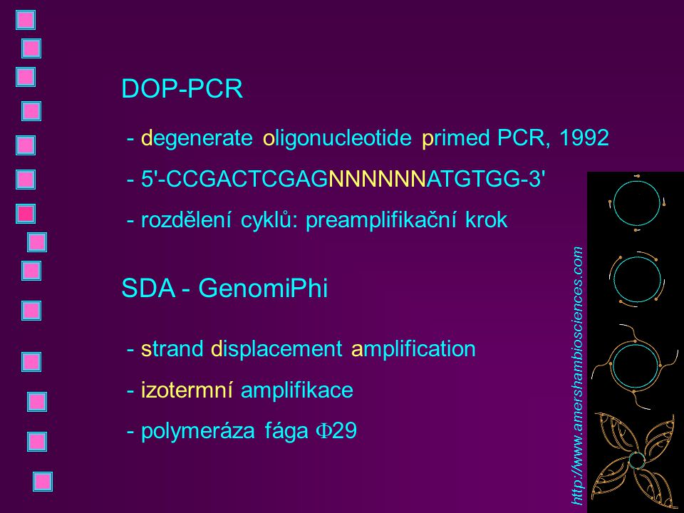 DOP-PCR SDA - GenomiPhi degenerate oligonucleotide primed PCR, 1992