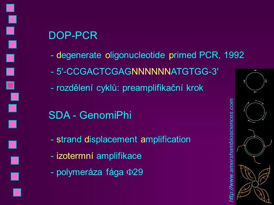 DOP-PCR SDA - GenomiPhi degenerate oligonucleotide primed PCR, 1992