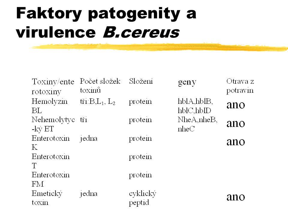Faktory patogenity a virulence B.cereus
