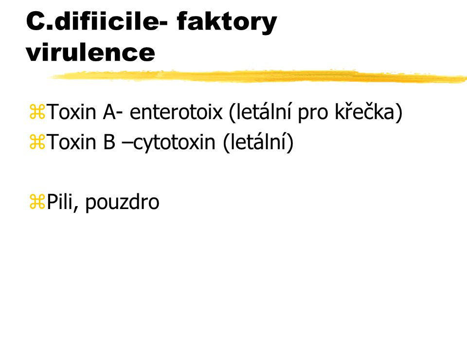 C.difiicile- faktory virulence