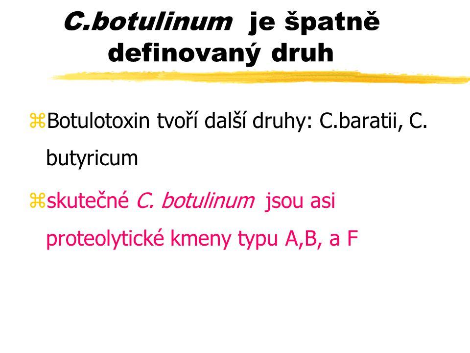 C.botulinum je špatně definovaný druh