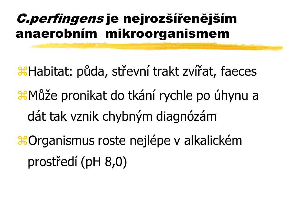 C.perfingens je nejrozšířenějším anaerobním mikroorganismem