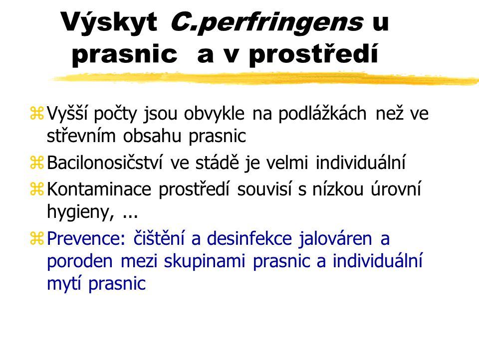 Výskyt C.perfringens u prasnic a v prostředí