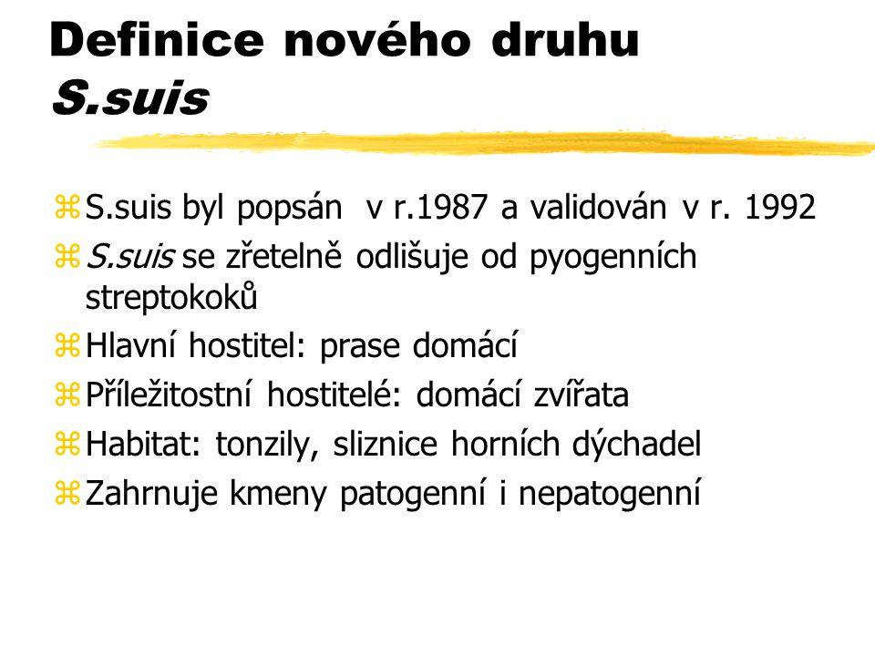 Definice nového druhu S.suis