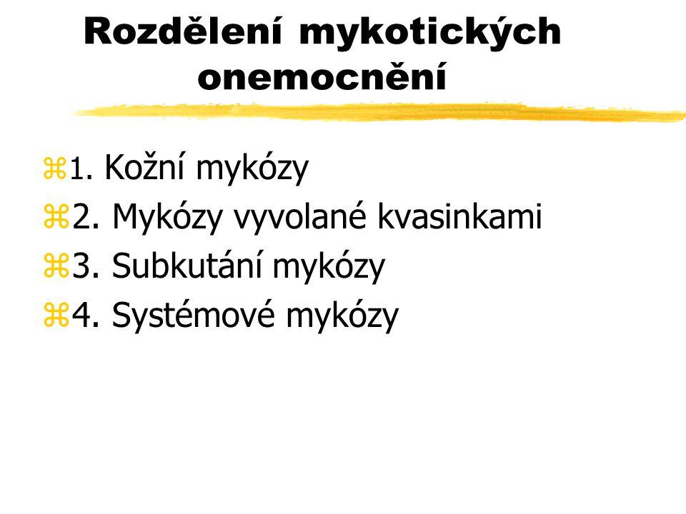 Rozdělení mykotických onemocnění
