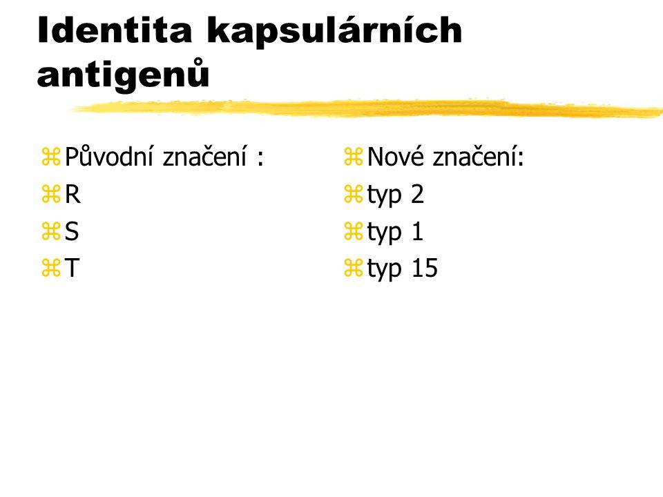 Identita kapsulárních antigenů