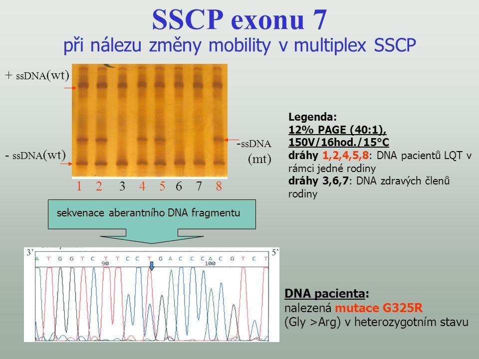 SSCP exonu 7 při nálezu změny mobility v multiplex SSCP