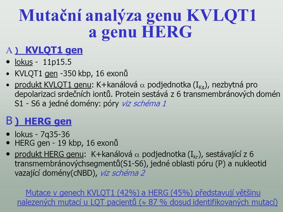 Mutační analýza genu KVLQT1 a genu HERG