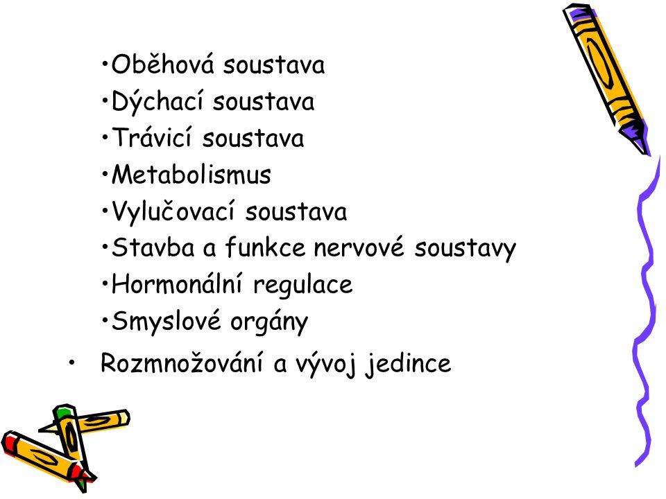 Oběhová soustava Dýchací soustava. Trávicí soustava. Metabolismus. Vylučovací soustava. Stavba a funkce nervové soustavy.