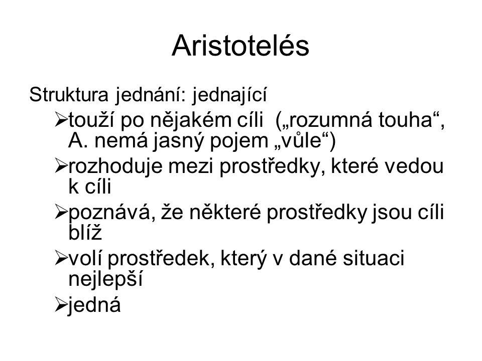 """Aristotelés Struktura jednání: jednající. touží po nějakém cíli (""""rozumná touha , A. nemá jasný pojem """"vůle )"""