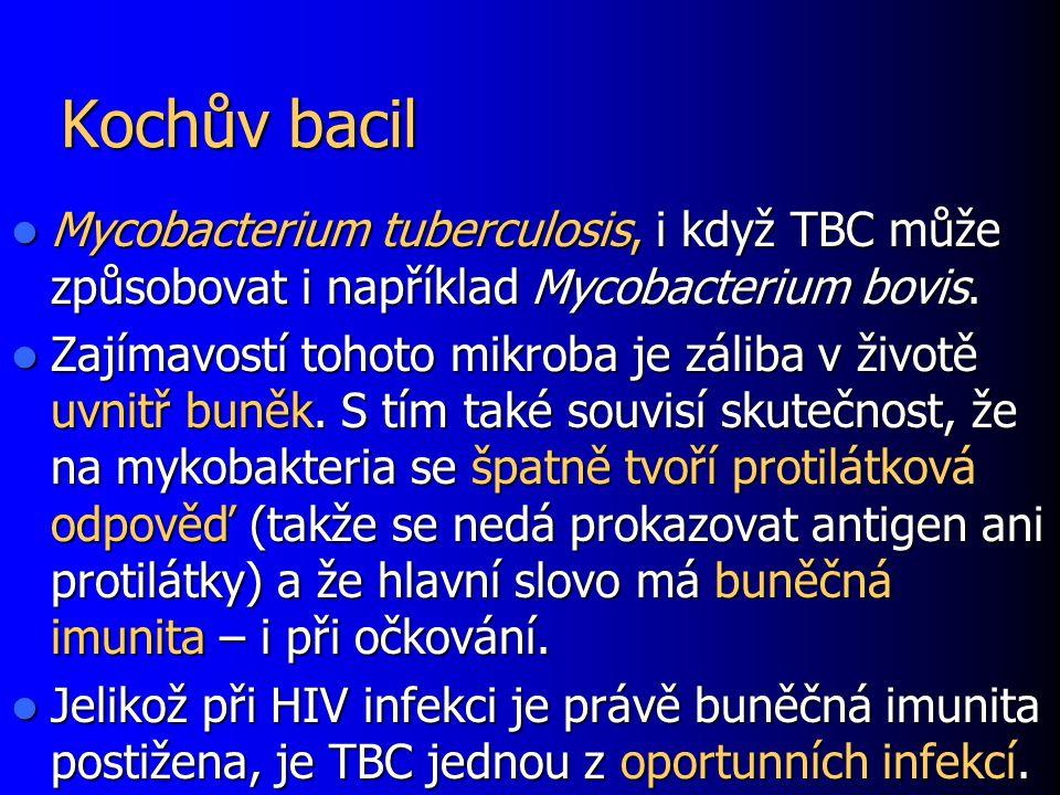 Kochův bacil Mycobacterium tuberculosis, i když TBC může způsobovat i například Mycobacterium bovis.