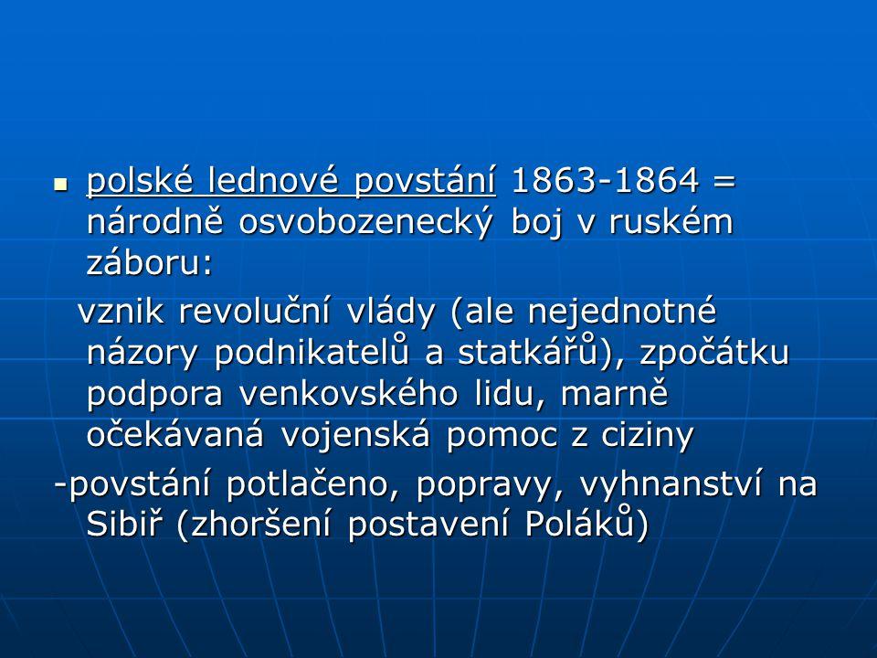 polské lednové povstání 1863-1864 = národně osvobozenecký boj v ruském záboru:
