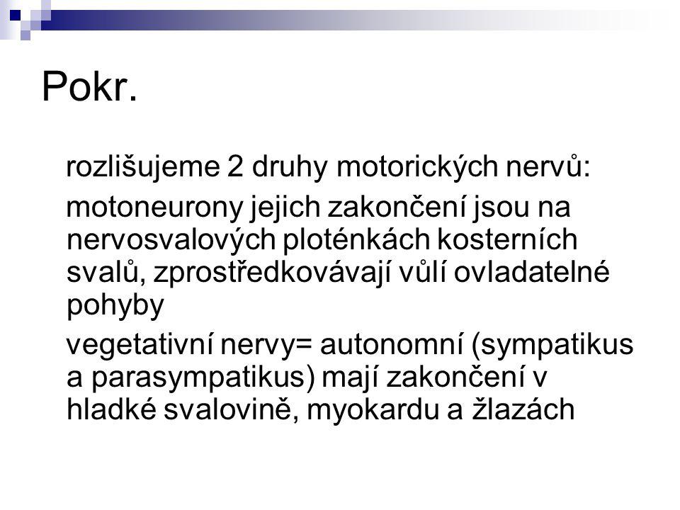 Pokr. rozlišujeme 2 druhy motorických nervů: