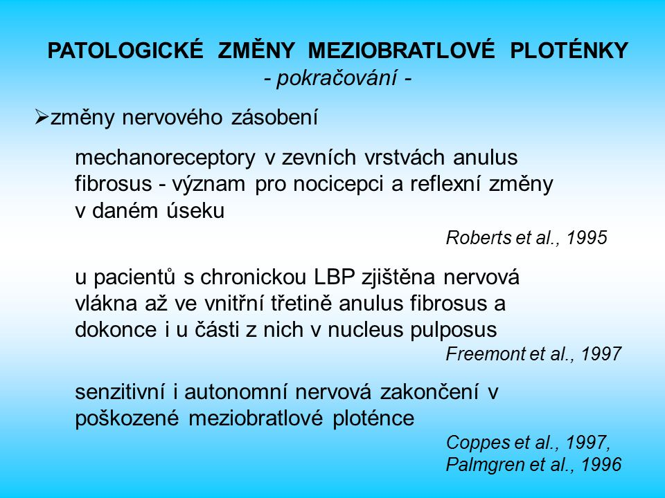 PATOLOGICKÉ ZMĚNY MEZIOBRATLOVÉ PLOTÉNKY