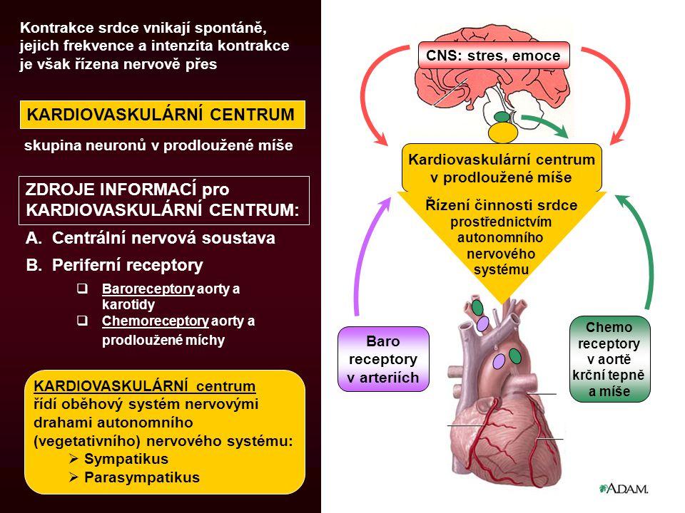 Kardiovaskulární centrum