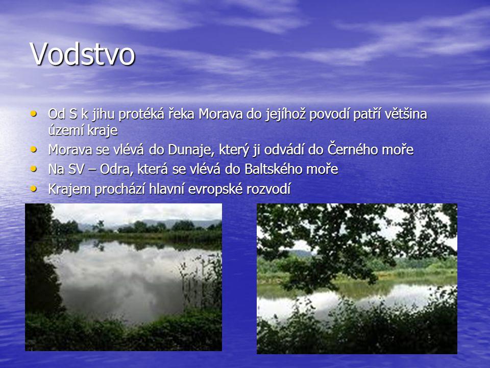 Vodstvo Od S k jihu protéká řeka Morava do jejíhož povodí patří většina území kraje. Morava se vlévá do Dunaje, který ji odvádí do Černého moře.