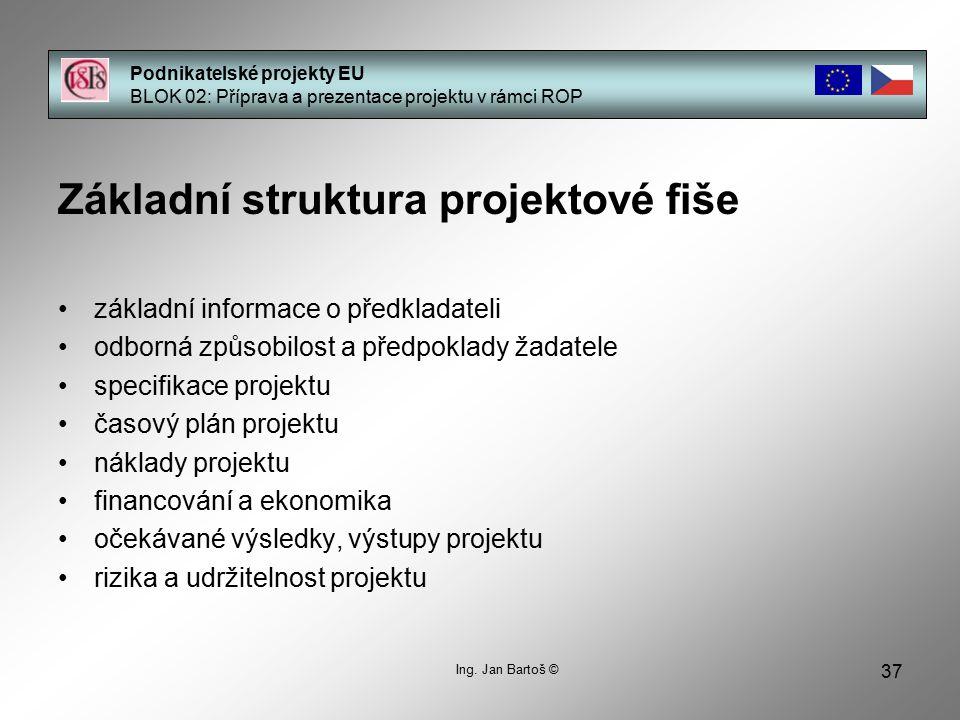 Základní struktura projektové fiše