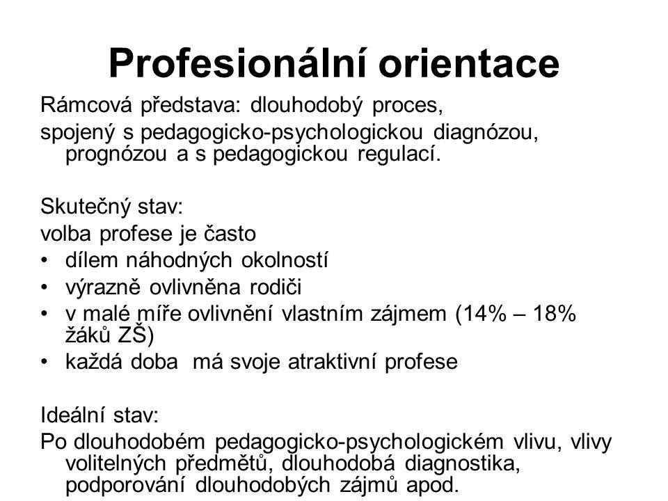 Profesionální orientace