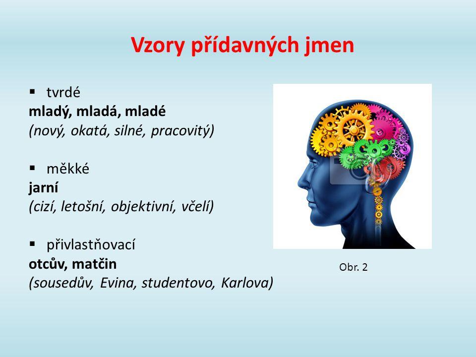 Vzory přídavných jmen tvrdé mladý, mladá, mladé
