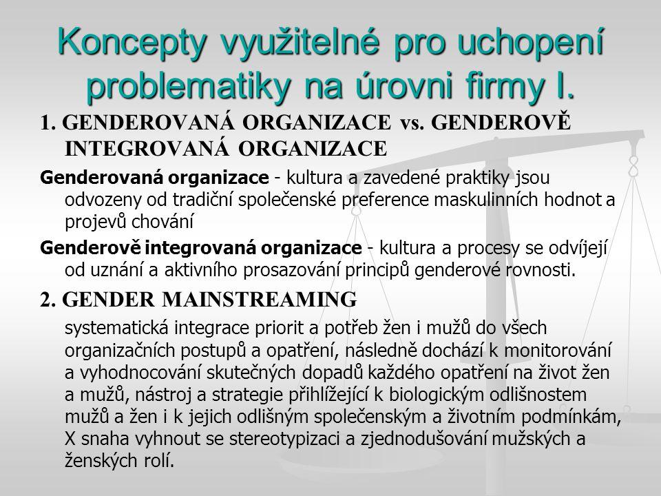 Koncepty využitelné pro uchopení problematiky na úrovni firmy I.