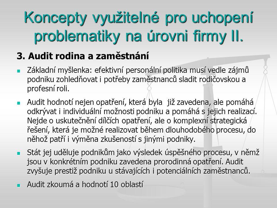 Koncepty využitelné pro uchopení problematiky na úrovni firmy II.