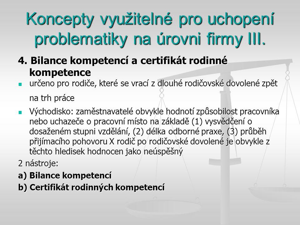 Koncepty využitelné pro uchopení problematiky na úrovni firmy III.