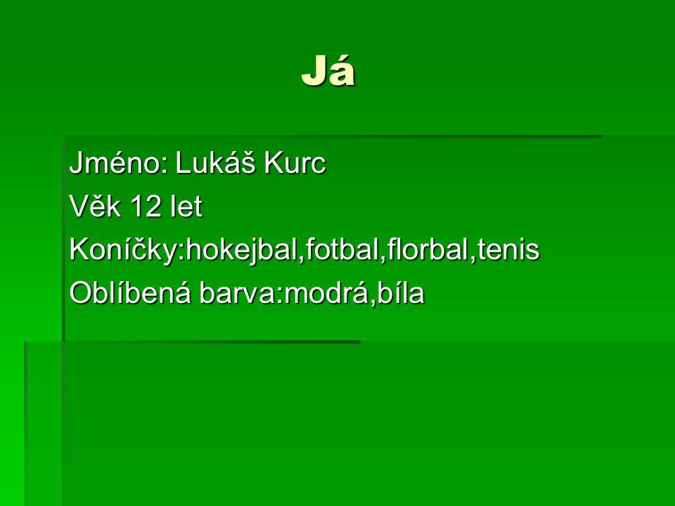 Já Jméno: Lukáš Kurc Věk 12 let Koníčky:hokejbal,fotbal,florbal,tenis