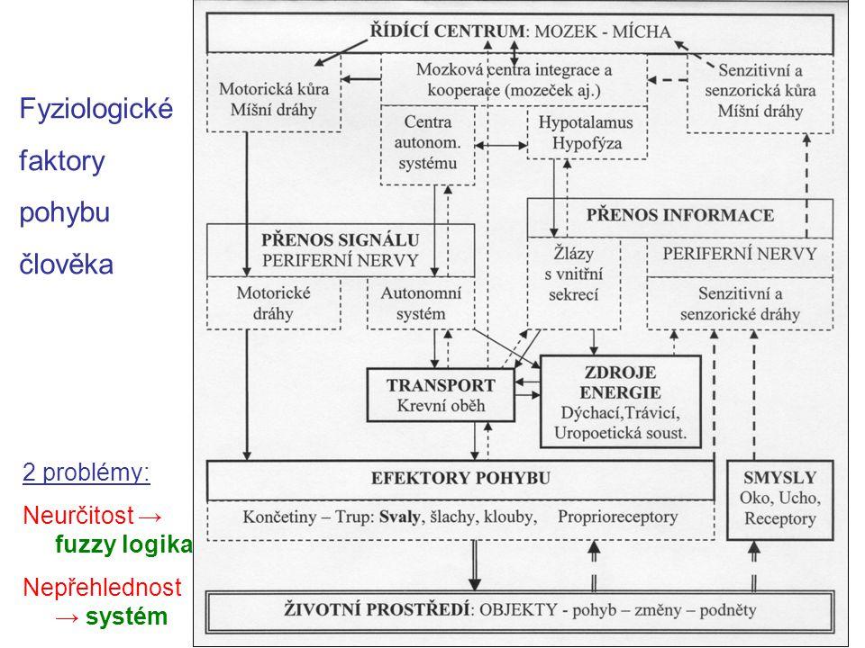 Fyziologické faktory pohybu člověka 2 problémy: