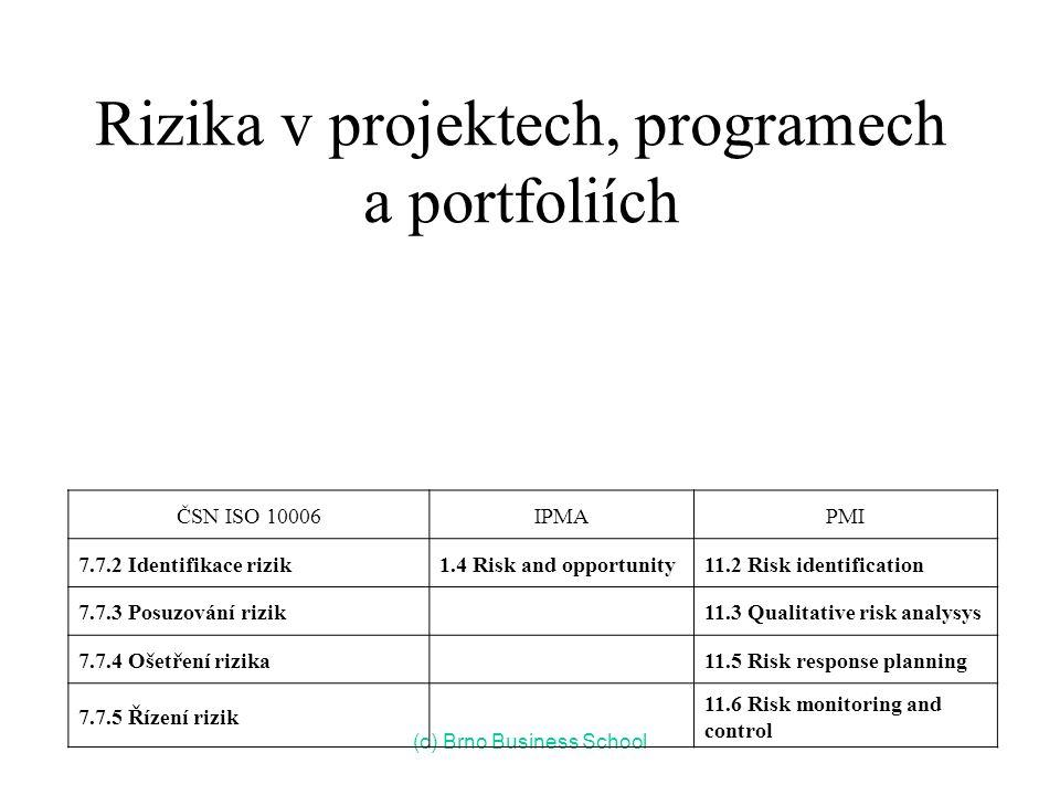 Rizika v projektech, programech a portfoliích