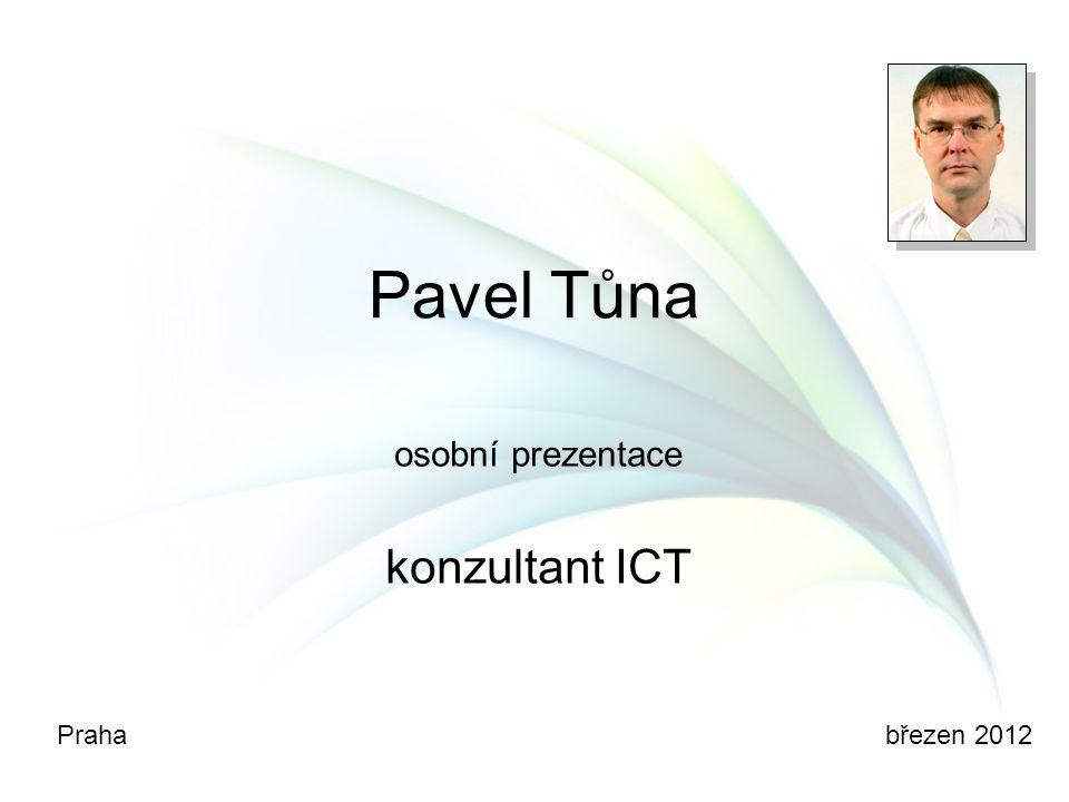 osobní prezentace konzultant ICT