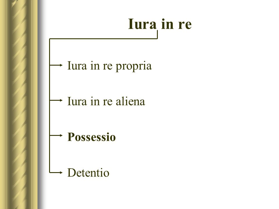 Iura in re Iura in re propria Iura in re aliena Possessio Detentio