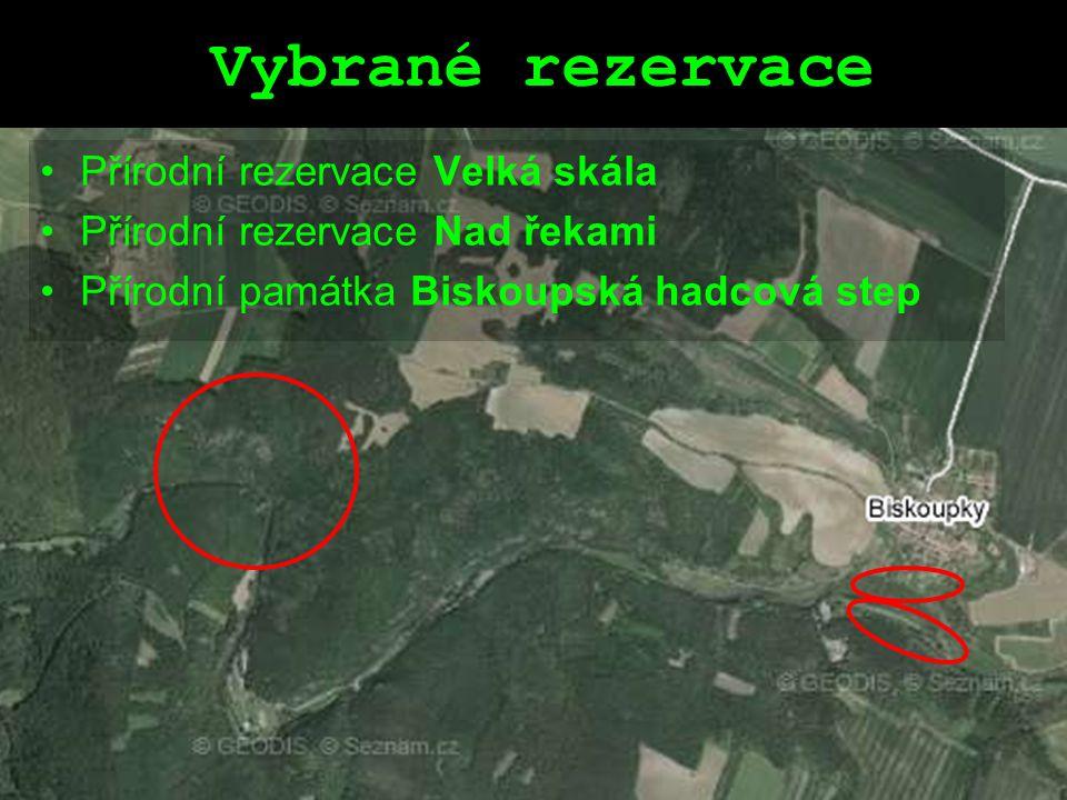 Vybrané rezervace Přírodní rezervace Velká skála