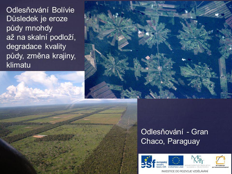 Odlesňování Bolívie Důsledek je eroze půdy mnohdy až na skalní podloží, degradace kvality půdy, změna krajiny, klimatu.