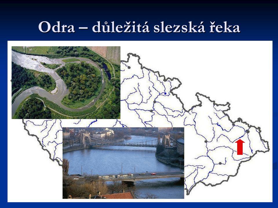 Odra – důležitá slezská řeka