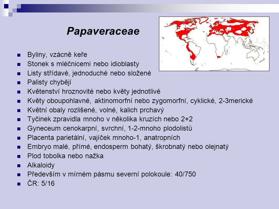 Papaveraceae Byliny, vzácně keře Stonek s mléčnicemi nebo idioblasty
