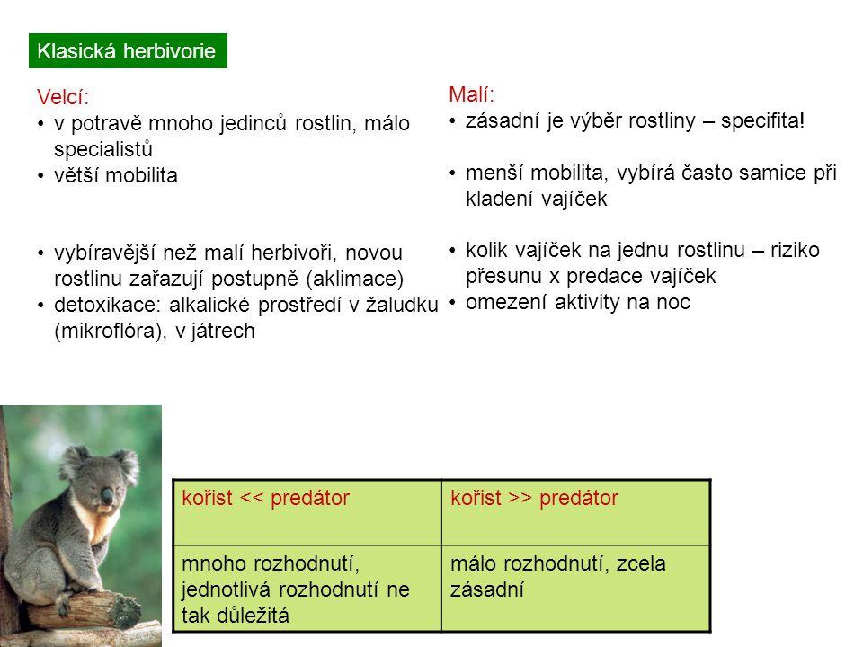 Klasická herbivorie Velcí: v potravě mnoho jedinců rostlin, málo specialistů. větší mobilita.