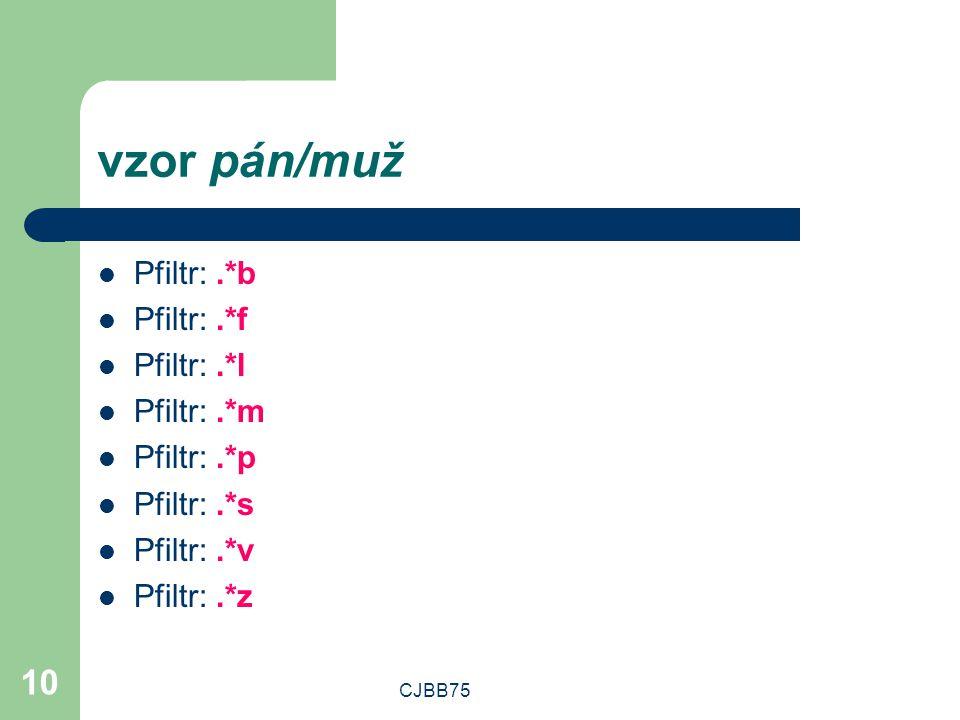 vzor pán/muž Pfiltr: .*b Pfiltr: .*f Pfiltr: .*l Pfiltr: .*m