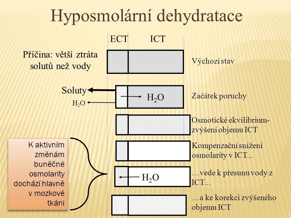 Hyposmolární dehydratace
