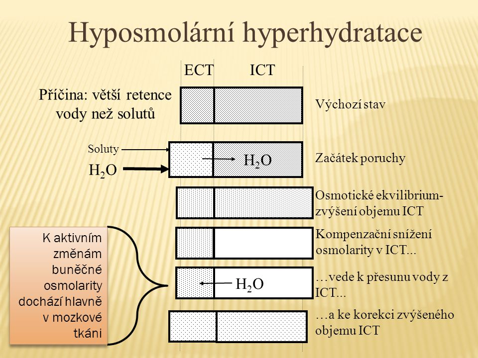 Hyposmolární hyperhydratace