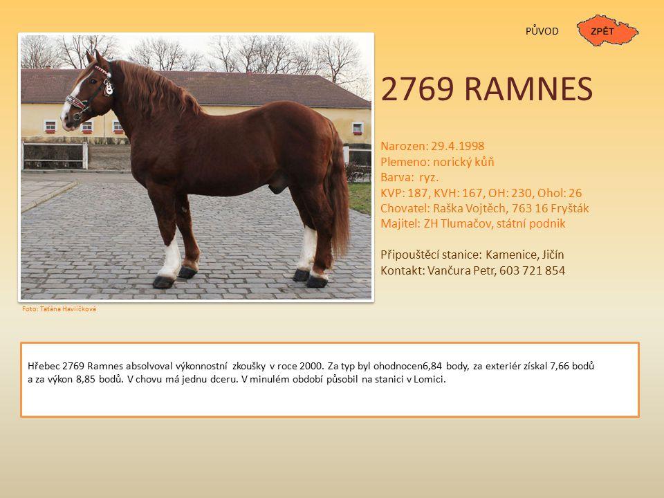 2769 RAMNES Narozen: 29.4.1998 Plemeno: norický kůň Barva: ryz.