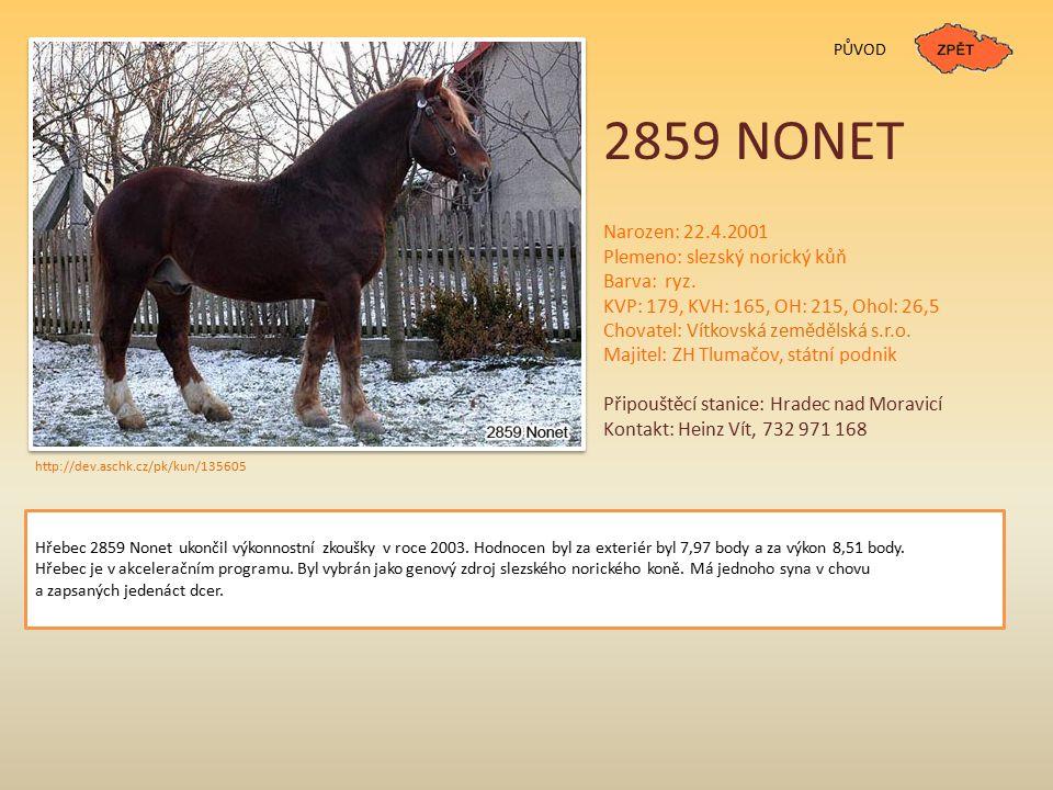 2859 NONET Narozen: 22.4.2001 Plemeno: slezský norický kůň Barva: ryz.