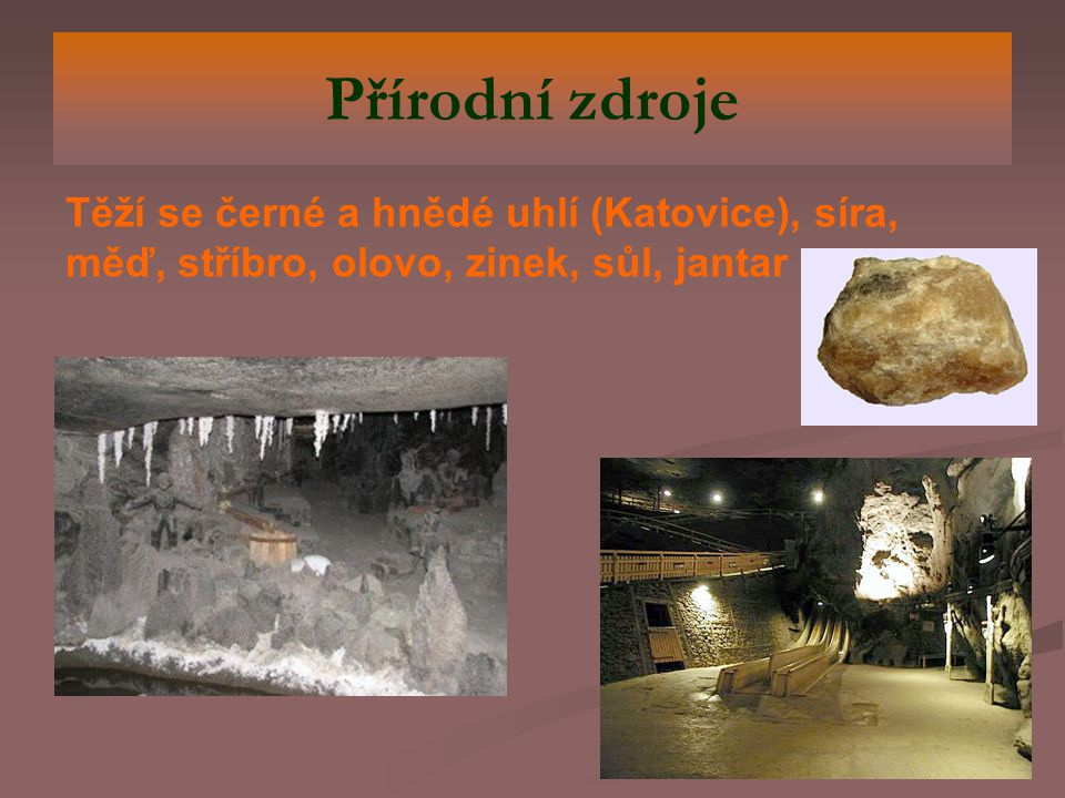 Přírodní zdroje Těží se černé a hnědé uhlí (Katovice), síra, měď, stříbro, olovo, zinek, sůl, jantar.