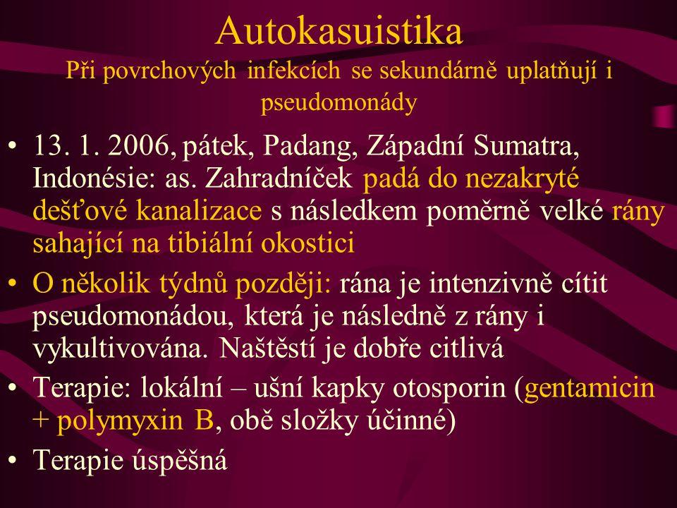 Autokasuistika Při povrchových infekcích se sekundárně uplatňují i pseudomonády