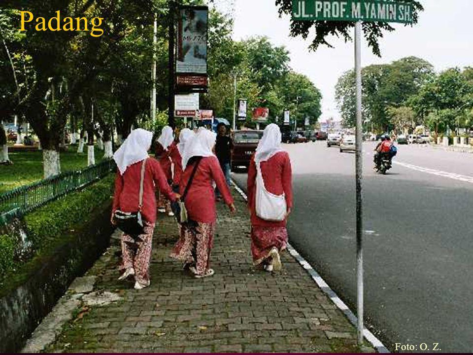 Padang Foto: O. Z.